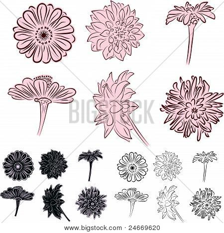 illustration of blooming flowers