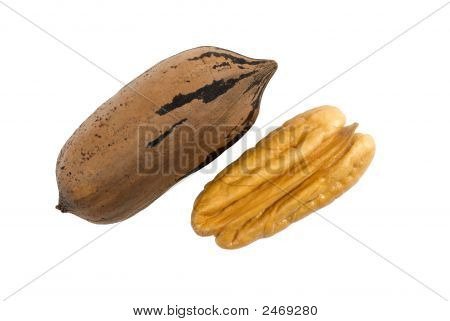 Two Pecan Nuts, One Shelled Isolated On White