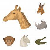 Wild Animal Cartoon Icons In Set Collection For Design. Mammal And Bird Vector Symbol Stock  Illustr poster