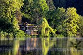 Lonely Little House In The Forest By The Lake. Relaxing Scene,  The House And Trees Are Beautifully  poster