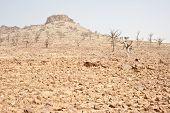 picture of dogon  - Rocky hill near Bandiagara Escarpment in the Dogon country of Mali  - JPG