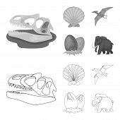 Prehistoric Shell, Dinosaur Eggs, Pterodactyl, Mammoth. Dinosaur And Prehistoric Period Set Collecti poster
