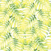 Palm Monstera Exotic Seamless Pattern. Green White Tropical Summer Background. Beach And Jungle Leav poster