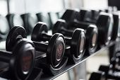 Close Up Black Dumbbell Set. Metal Dumbbells On Rack In Sport Fitness Center , Weight Training Equip poster
