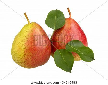 Red Pears With Leaves