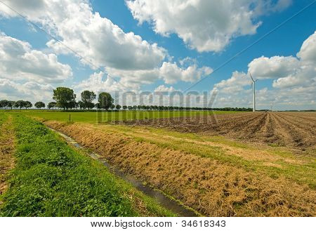 Furrows on a field in summer