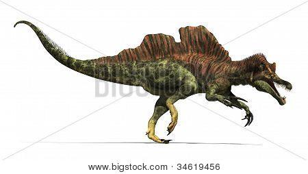 Ichthyovenator Dinosaur
