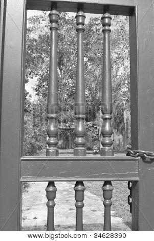 Looking through a locked gate
