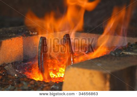 Horseshoe In A Forge