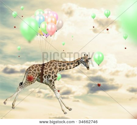 Ingenious giraffe flying using balloons to reach an apple