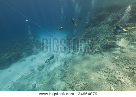 Scuba divers and  tropical reef in the Red Sea.