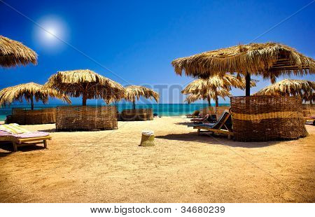 Nice Exotic Beach By Summertime.