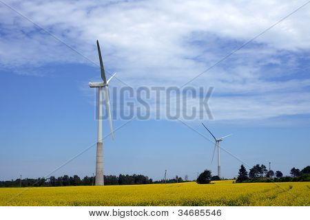 Landscape With A Propeller