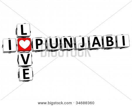 3D I Love Punjabi Crossword