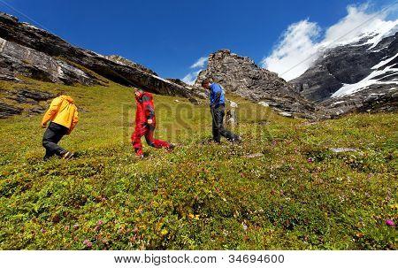 Eiger trekking, Berner Oberland, Switzerland