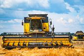Harvester Machine Harvesting In Wheat Field. Combine Harvester Agriculture Machine Harvesting Golden poster
