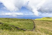 Cows Graze In Pastures With Sao Jorge Island In The Distance On Pico Island In The Azores, Portugal. poster