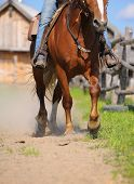 stock photo of buckaroo  - western horse riding closeup at the ranch - JPG