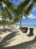 Beautiful Palm Grove On White Sandy Beach On Paradise Sea.the Letters And Heart Shape Next To The Sh poster