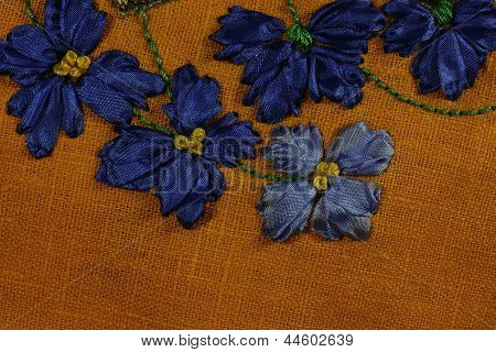 Blue Chicory