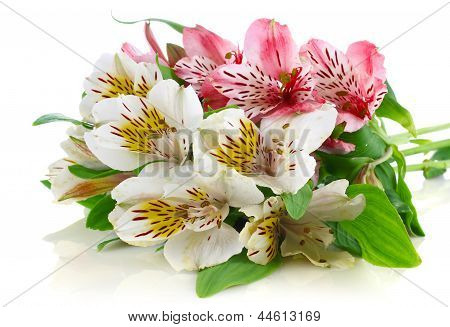 Beautiful Spring Bouquet With Green Leaves