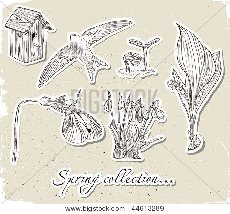 Vintage set of spring elements.