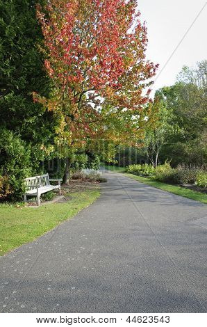 Wooden Bench In Empty Garden Path