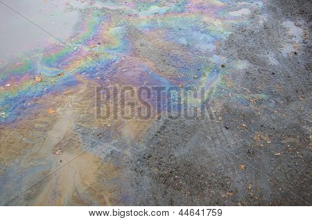 Oil Slick On The Road.