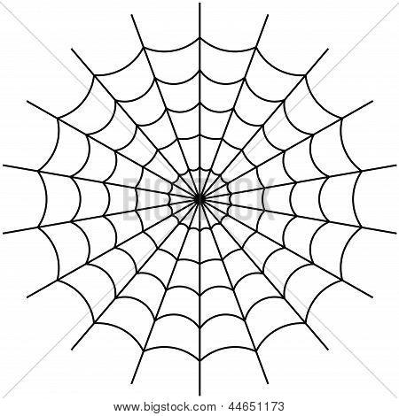 vector de tela de araña