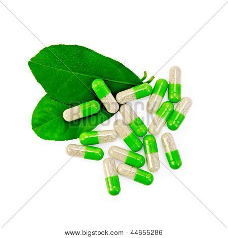 Capsules Green With Leaves