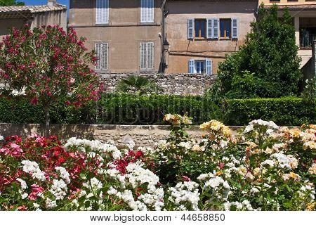 Garden in Aix