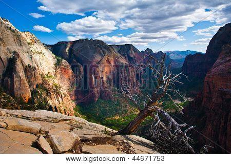 Beautiful Landscape in Zion National Park,Utah