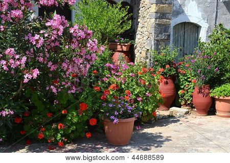 Plant pots with flowers in Greece.