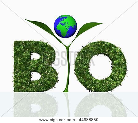 Bio Word With A Plant And The World