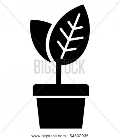 Flowerpot with growing up young leaves black vector icon