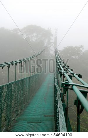 Cloud forest suspension bridge