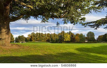 Cooper Park in autumn