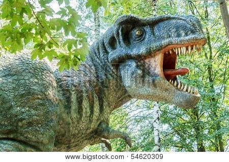 Model Of Big Tyranosaurus Rex Jungle