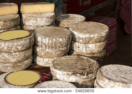 Cheese tomes des Bauges, french production (France)