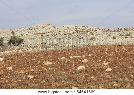 Joshua Altar of Sacrifice in the Mount of Ebal