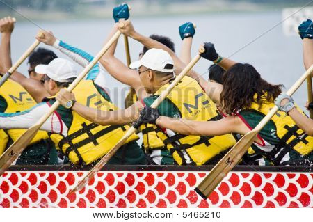 Dragon Boat Race Paddlers