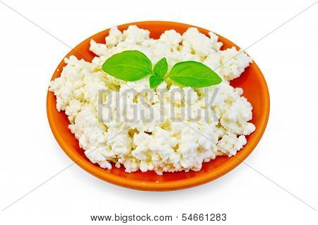 Curd In A Clay Plate With Basil