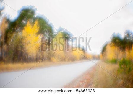 blur autumn road in forest