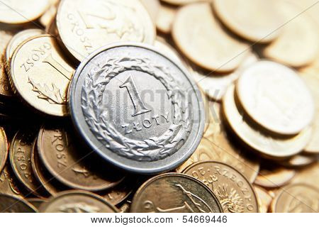 Polish Currency With Zloty Coins