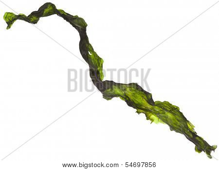 dried seaweed kelp close up Isolated on white background