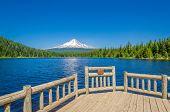 stock photo of trillium  - Majestic mountain lake in Canada - JPG