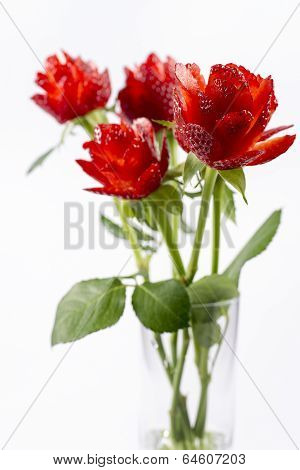Strawberry Roses In The Vase