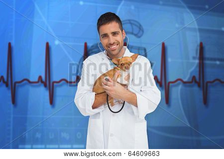 Vet holding chihuahua against blue medical background with heart diagram and ecg
