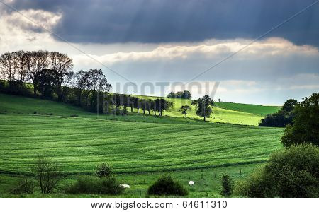 Colorful Rural Landscape With Green Fields