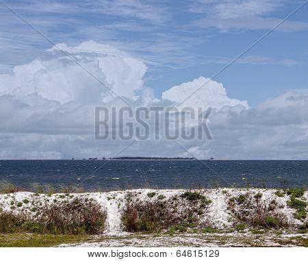 Gulf Coast Beauty